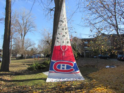 Accueillons nos Canadiens !