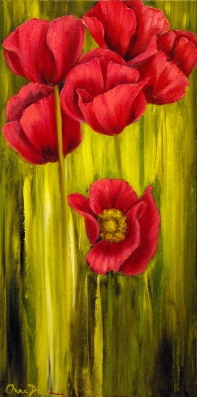 Pavot Rouge-Rose