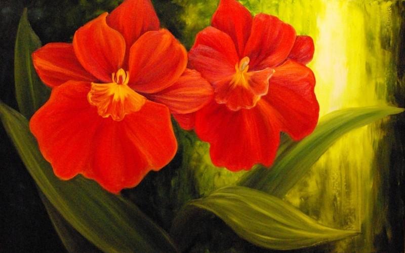 Miltonias rouge