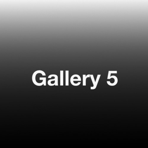 Gallery 5