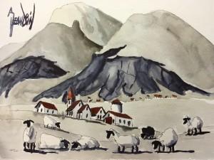HELGAFELL SHEEP